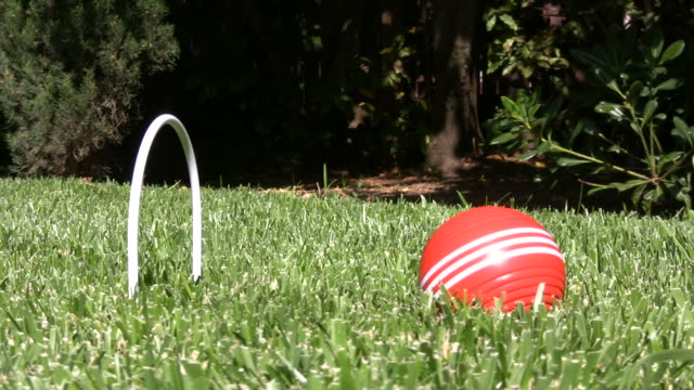 croquet - easy shot - cricket stump stock videos & royalty-free footage