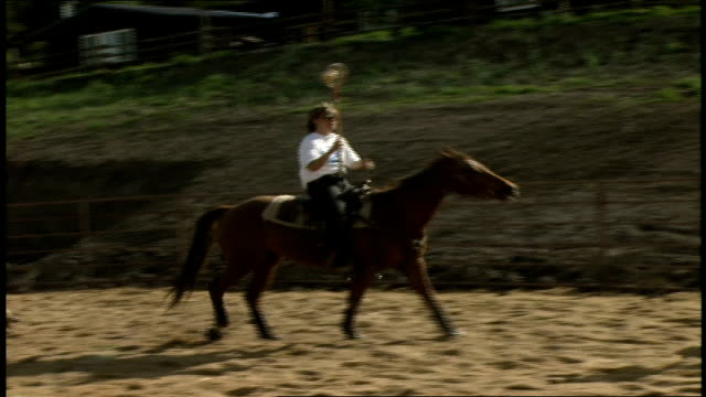 cross between polo and lacrosse - hooved animal stock videos and b-roll footage