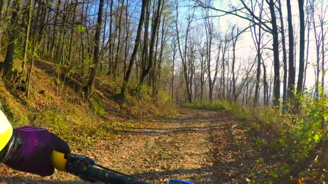 POV Cross country downhill through the forest.