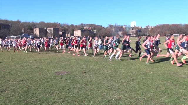 cross country running go left to right on course at van cortlandt park in the bronx - salmini stock videos & royalty-free footage