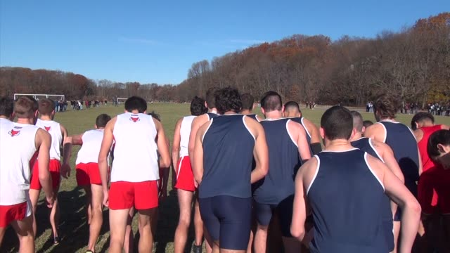 cross country running men's start from behind and women at van cortlandt park in the bronx - salmini stock videos & royalty-free footage