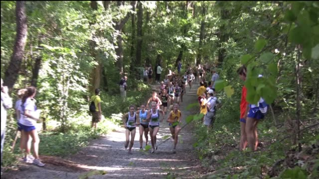 cross country running women on trail in woods leaders go by camera - salmini stock videos & royalty-free footage