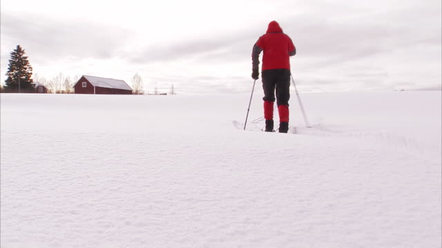 a cross country skier norrland sweden. - nordeuropäischer abstammung stock-videos und b-roll-filmmaterial