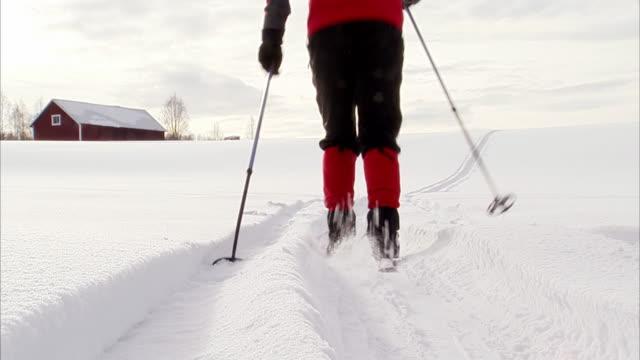 a cross country skier norrland sweden. - skiurlaub stock-videos und b-roll-filmmaterial
