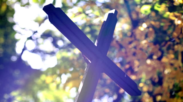 Cross in cemetery, Trees, Lights