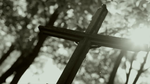 Cross in cemetery, Trees, Lights