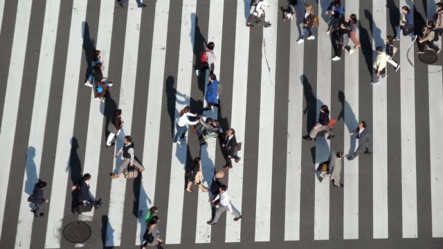 vídeos y material grabado en eventos de stock de caminata cruzada en la intersección de ginza, hora punta, tokio japón - paso de cebra