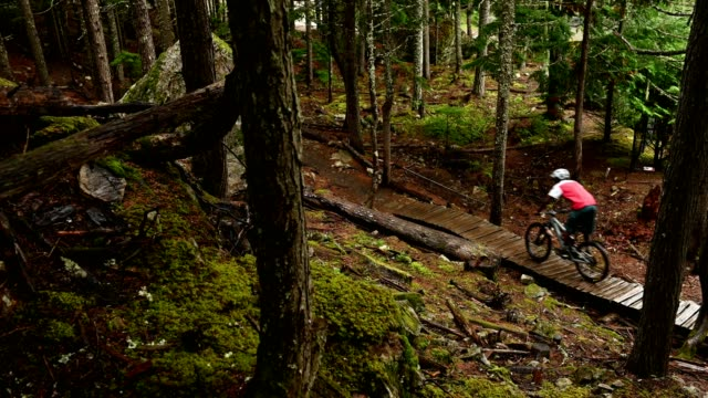 crosscountry mountain biking in a lush forest - mountain bike stock videos & royalty-free footage