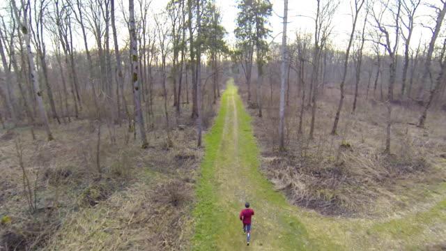 HD HELI: Cross-Country Läufer In den Wald