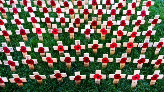 crosses of remembrance and bearing the names of fallen soldiers and poppies adorn the field of remembrance at the national memorial arboretum on... - remembrance day stock videos & royalty-free footage