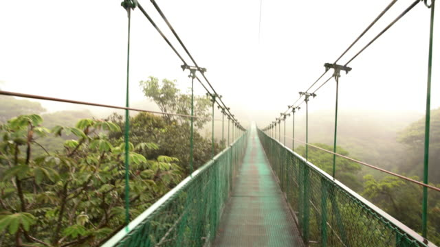 pov crossing a hanging footbridge in rainforest - footbridge stock videos & royalty-free footage