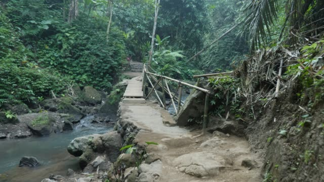 crossing bridge in jungle - south pacific ocean stock videos & royalty-free footage