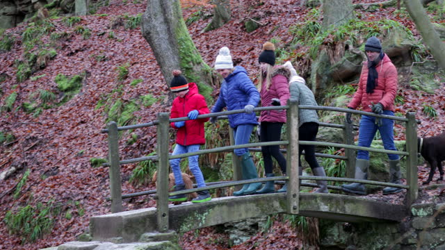 crossing the bridge - family with three children stock videos & royalty-free footage
