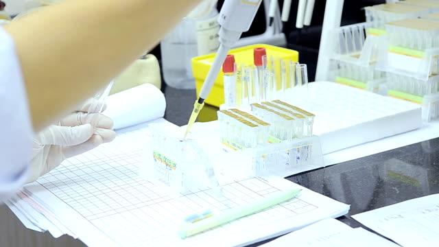 crossmatching by gel card test - vetreria da laboratorio video stock e b–roll