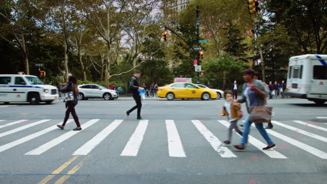stockvideo's en b-roll-footage met crosswalk near city hall park, new york city - town hall