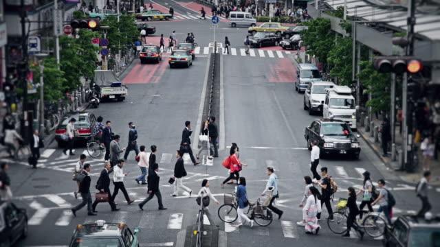 Crosswalks over Tokyo Boulevard