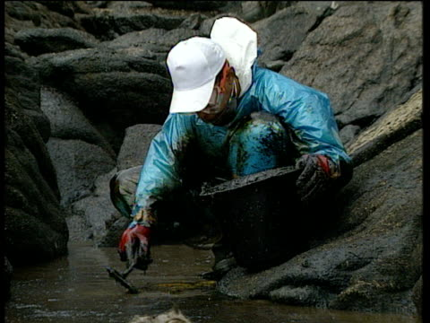 vidéos et rushes de crouching clean up operation worker in protective clothing uses trowel to sift oil sludge from sea tilt up to others hosing down oil covered rocks - marée noire
