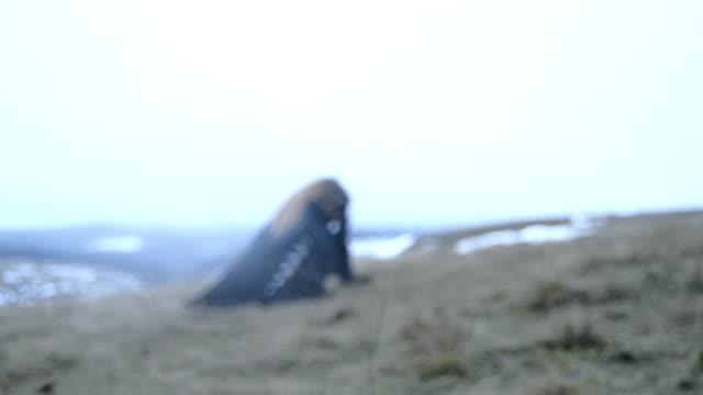 krähe seele - model stock-videos und b-roll-filmmaterial