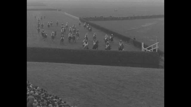 crowd at aintree racecourse for running of the grand national horse race / horses exercise in paddock as spectators look on / quick montage jockeys... - enclosure stock videos & royalty-free footage