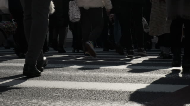 crowd at the crosswalk in shinjuku,tokyo japan - cultura giapponese video stock e b–roll