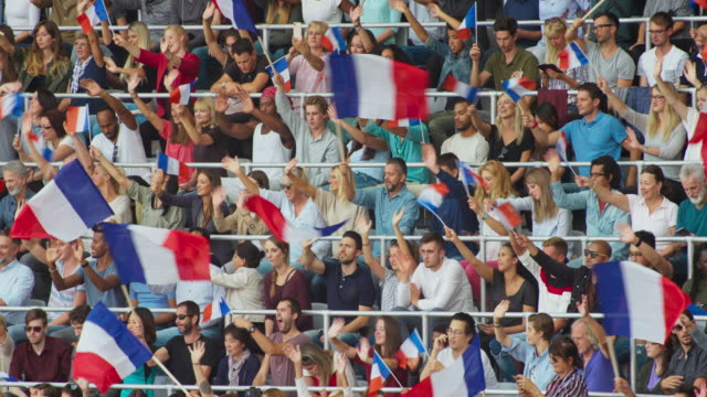 LD Crowd at the stadium sitting and waving the French Tricolour