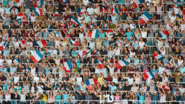 LD Crowd at the stadium waving the French tricolours