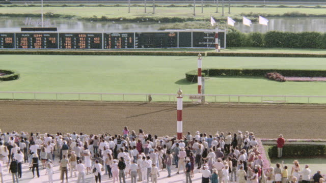 a crowd claps and cheers as two horses cross the finish line neck-and-neck at a racetrack. - galoppieren stock-videos und b-roll-filmmaterial