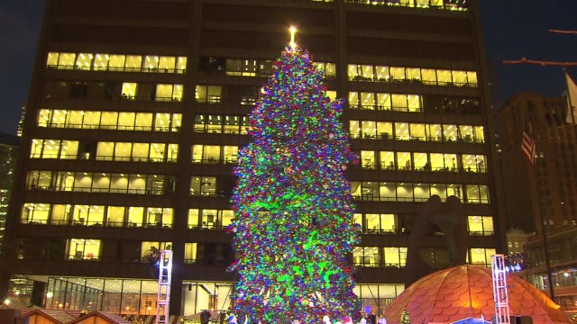 stockvideo's en b-roll-footage met a crowd counts down to the christmas tree lighting ceremony in chicago's daley plaza on nov 25 2014 - verlichtingsceremonie kerstboom