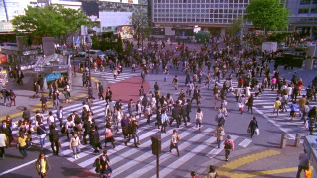 WS HA Crowd crossing street in Shibuya, Tokyo, Japan