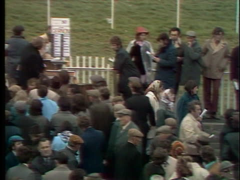 crowd gathers and places bets before a horse race in listowel, ireland. - healthcare and medicine or illness or food and drink or fitness or exercise or wellbeing stock videos & royalty-free footage