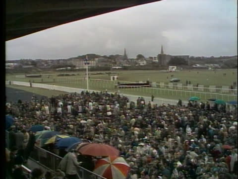 crowd gathers to watch a horse race in listowel, ireland. - healthcare and medicine or illness or food and drink or fitness or exercise or wellbeing stock videos & royalty-free footage