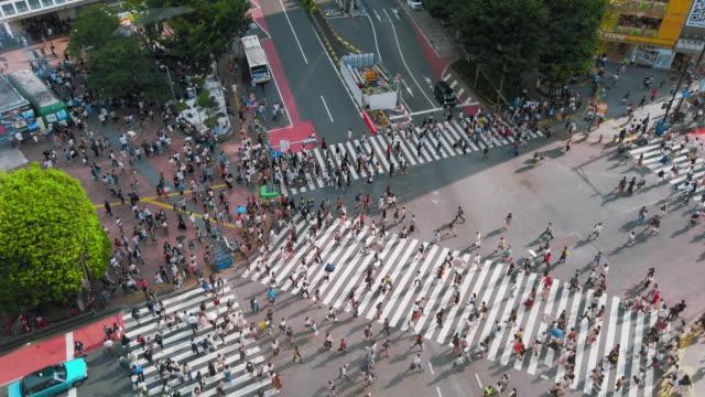 crowd in shibuya cross - road junction stock videos & royalty-free footage