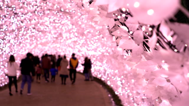 crowd in winter season with pink light illumination at night in winter nagoya, japan. - arch architectural feature stock videos and b-roll footage