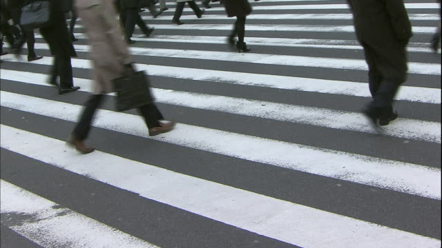 a crowd of commuters walks across a crosswalk. - human leg stock videos and b-roll footage