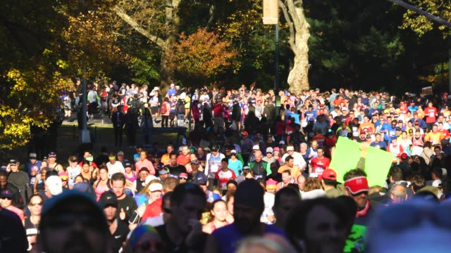 vídeos de stock, filmes e b-roll de crowd of new york city marathon runners runs among the many audiences which are surrounded by autumn color trees at central park new york ny usa on... - 2018