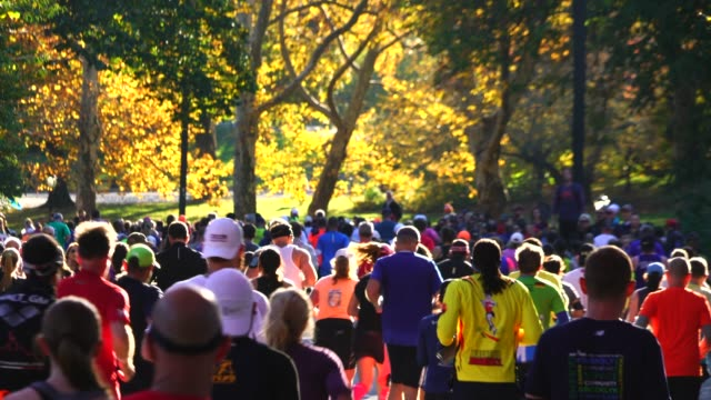 crowd of new york citya marathon runners runs among the many audiences which are surrounded by autumn color trees at central park new york ny usa on... - 2018 stock videos & royalty-free footage