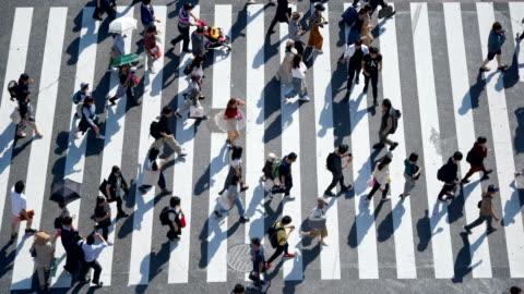 vídeos y material grabado en eventos de stock de multitud de personas commuters caminando en el cruce de shibuya - cruzar