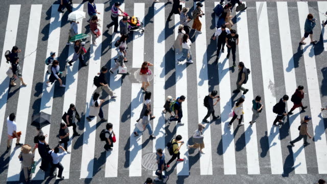 crowd of people commuters walking at shibuya crossing - vita cittadina video stock e b–roll