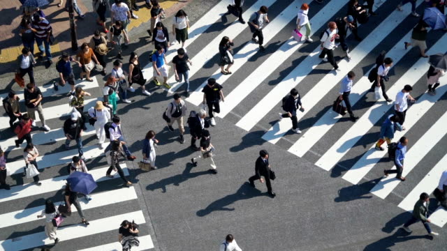 slo mo crowd of people commuters walking at shibuya crossing. - wide stock videos & royalty-free footage