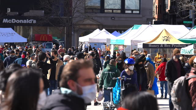 a crowd of people shop at the union square green market amidst the pandemic of covid-19. - virus organism stock videos & royalty-free footage