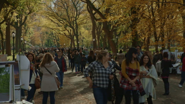 crowd of people slowly walking around in central park nyc - central park manhattan stock videos & royalty-free footage