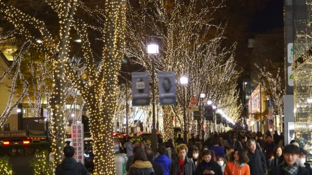a crowd of people walks down the sidewalk beside the omotesando street among the illuminated rows of zelkova trees and many fashion boutiques for winter holydays season in the night at kitaaoyama, minato tokyo japan on december 05 2017. - イルミネーション点の映像素材/bロール