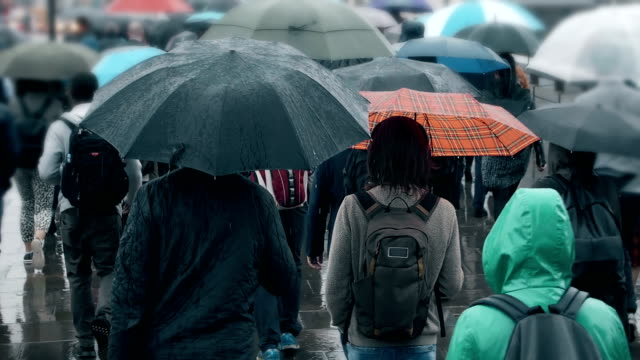 crowd of people with umbrellas walking in the rain. sm. - overcast stock videos & royalty-free footage
