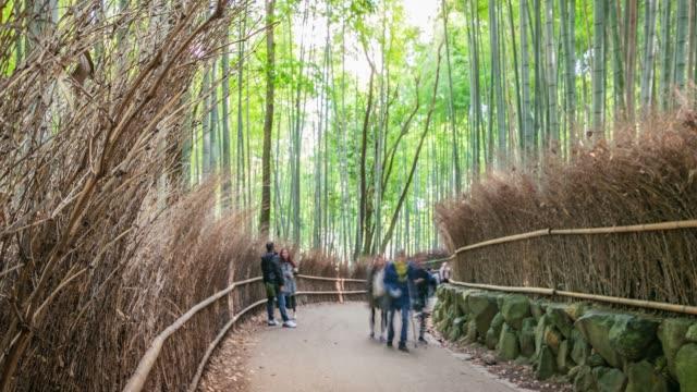 folla di persone viaggianti che camminano nella foresta di bambù di arashiyama con scean della natura a kyoto, giappone - bamboo plant video stock e b–roll