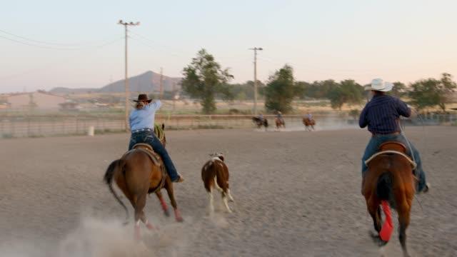 masse auf dem pferderücken zu sehen das team roping ereignis bei einem staubigen rodeo - subjektive kamera blickwinkel aufnahme stock-videos und b-roll-filmmaterial