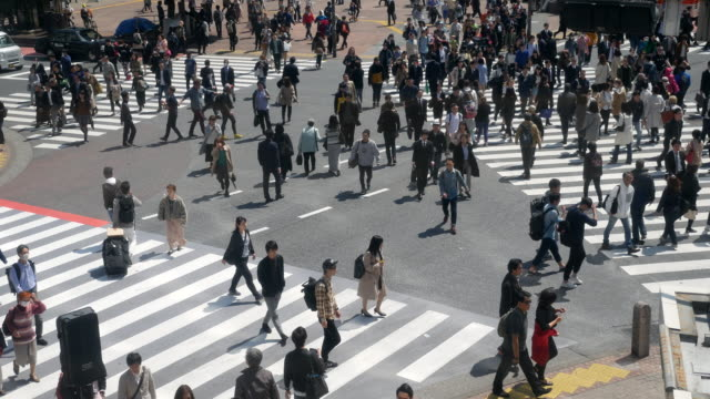 crowd on shibuya crossing japan - ora di punta video stock e b–roll