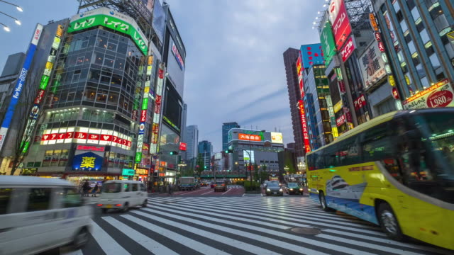 vídeos de stock e filmes b-roll de crowd on the street at shinjuku, japan - grupo mediano de animales