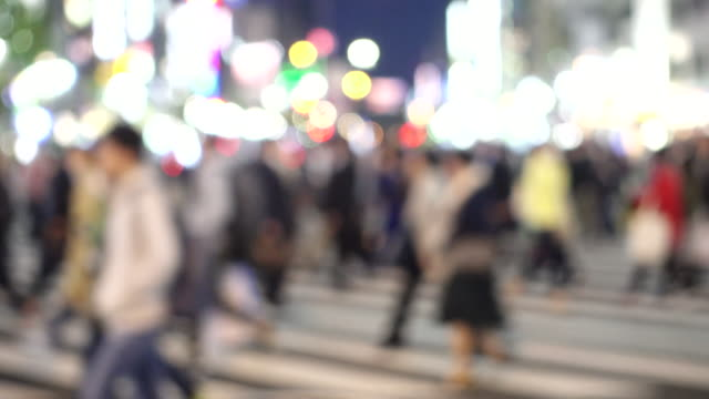 vídeos de stock e filmes b-roll de crowd on the street in japan - grupo mediano de animales