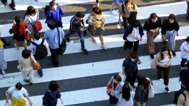 vídeos de stock, filmes e b-roll de cruzamento dos pedestres da multidão no cruzamento de shibuya no tempo do dia, tokyo, japão - top