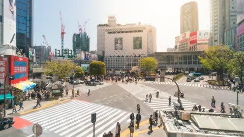 crowd people crossing intersection shibuya at shibuya in japan - shibuya ward stock videos & royalty-free footage